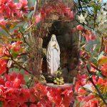 Ogłoszenia parafialne: V Niedziela Wielkanocna, (29.04.2018)